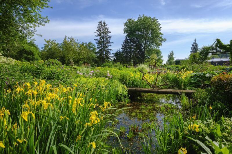 Bild von Schauß Christian Dipl.Ing. Gartenplaner